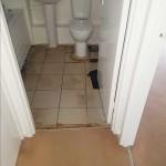 Vinyl Install in Toilet